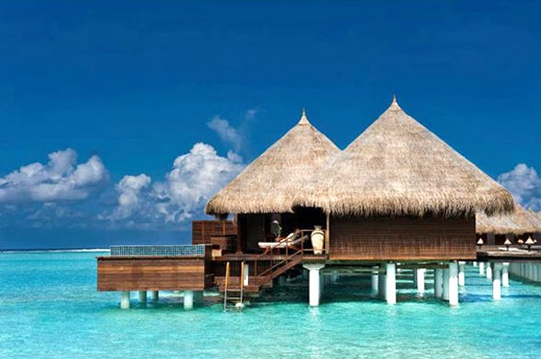 Taj Exotica Resort & Spa - $400 - $2000 / day