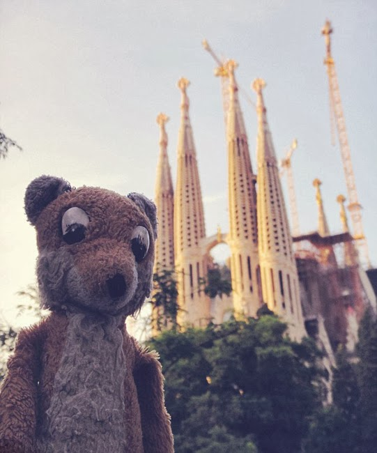 Amazing globetrotting of Mr Fox