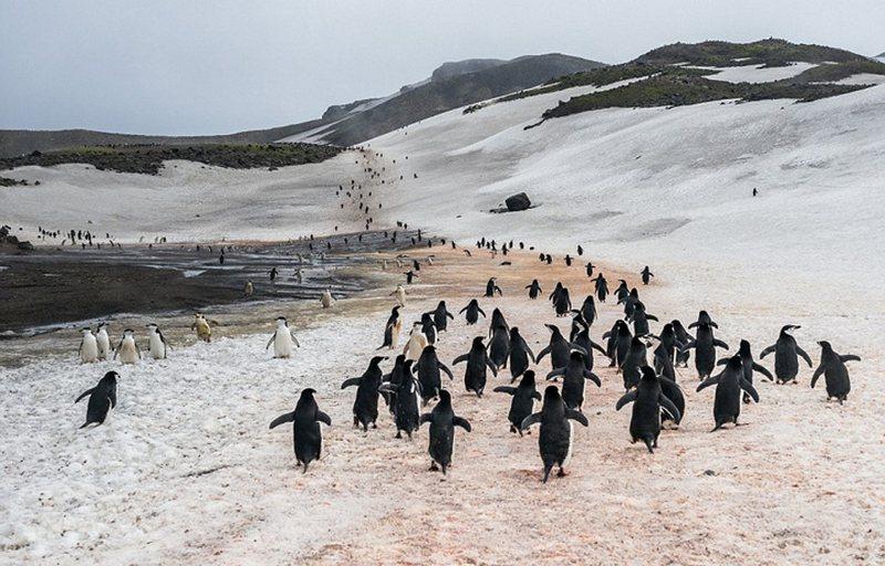 Stunning scenery of Antarctica